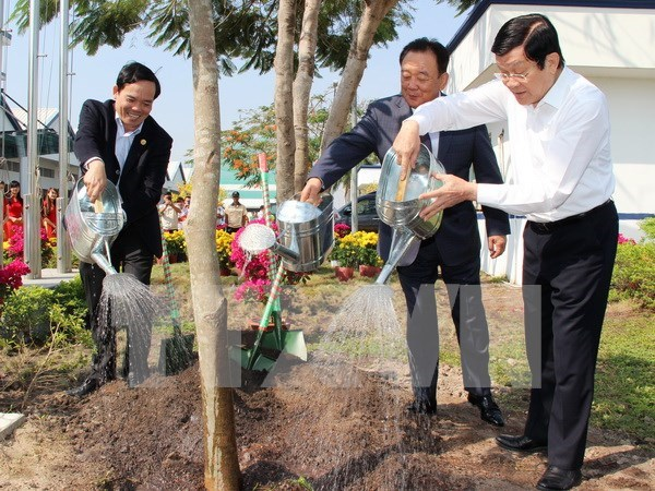 President launches Tree Planting Festival in Tuyen Quang hinh anh 1