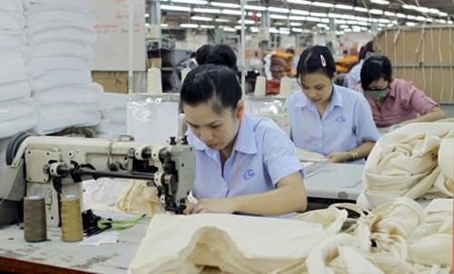 Benefits encourage IP workers to return hinh anh 1