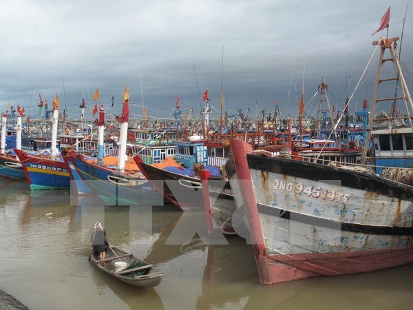 Ca Mau fishermen equipped with communication devices hinh anh 1