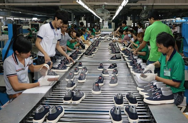 Domestic footwear makers face bumpy ride ahead hinh anh 1