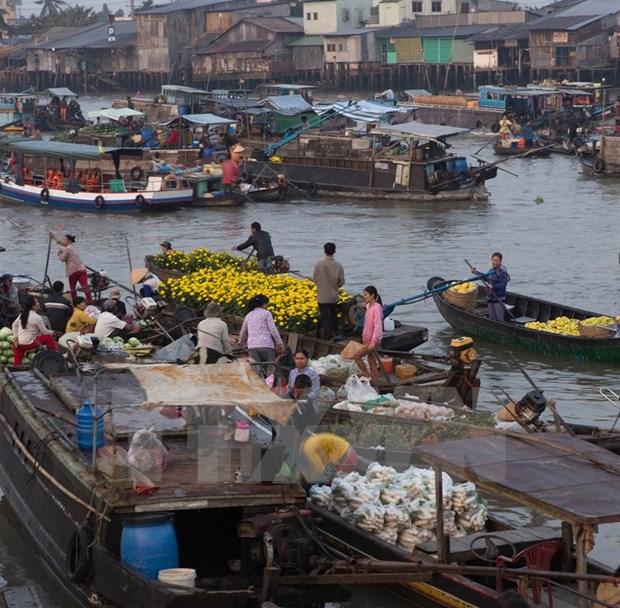 Can Tho preserves Cai Rang Floating Market hinh anh 1