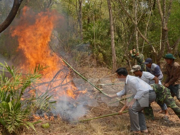Dry weather raises fire alert across nation hinh anh 1
