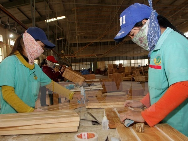 HCM City trade union aims to have 90,000 members in 2016 hinh anh 1