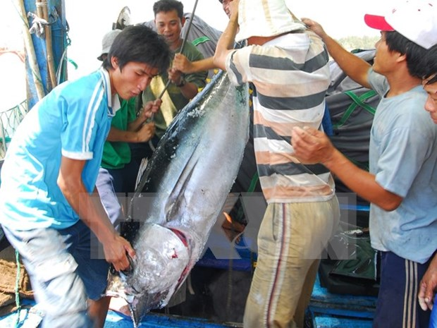 Agro-forestry-fishery export picks up 5.5 percent hinh anh 1