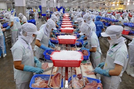 Domestic exporters urged to restructure to utilise TPP deal hinh anh 1