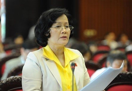 First female deputy to submit law to National Assembly hinh anh 1
