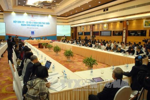 Stronger connectivity to capitalise on TPP opportunities hinh anh 1