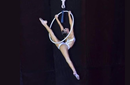 Circus gala honours Int'l Women's Day hinh anh 1