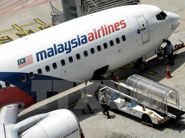 MH370 families sue airline as deadline nears hinh anh 1