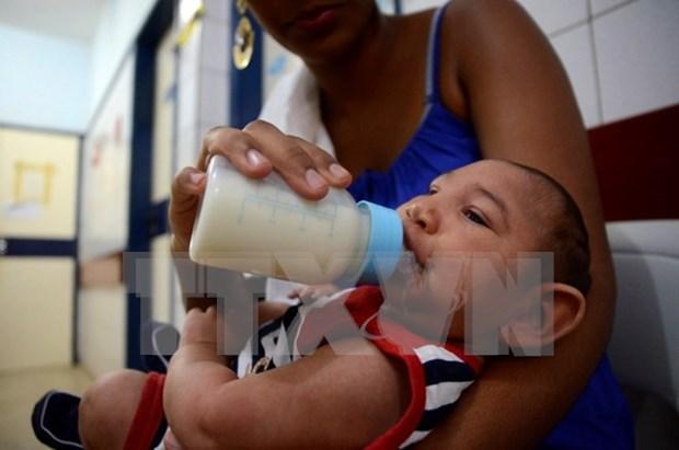 Zika virus yet to enter Vietnam hinh anh 1