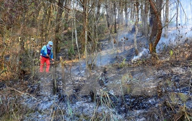 Dry weather raises fire alert in Dien Bien hinh anh 1