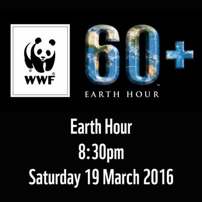 Hanoi to turn off lights for Earth Hour hinh anh 1