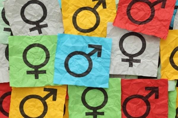 Social determinants of gender inequality in Vietnam hinh anh 1