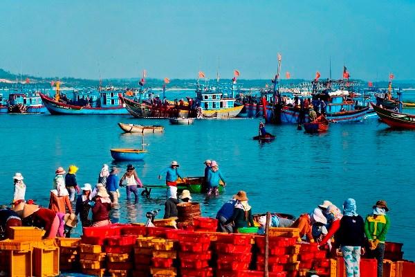 Exhibition features beauty of Hoang Sa Flotilla's homeland hinh anh 1