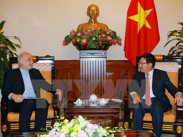 Vietnam, Iran to discuss improving bilateral trade hinh anh 1