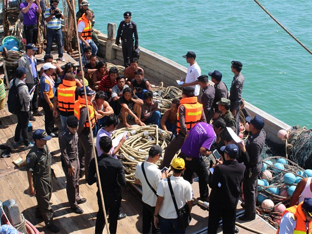 Thailand, Taiwan to cooperate in tackling IUU fishing hinh anh 1