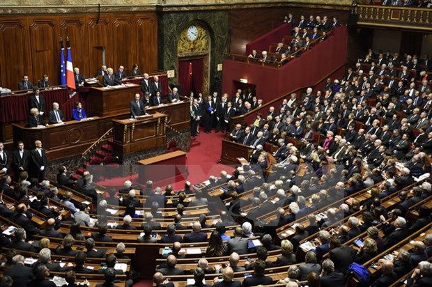 French Chamber of Deputies ratifies Vietnam-EU agreement hinh anh 1