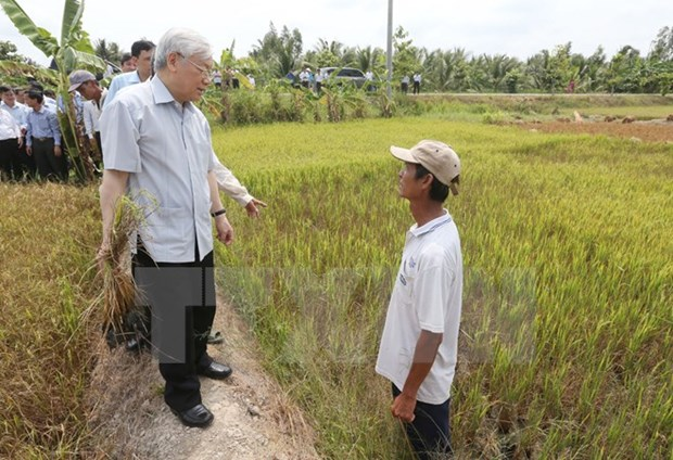 Party chief asks for long term response plan against saltwater creep hinh anh 1