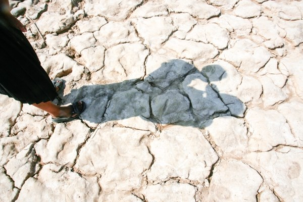 Almost all provinces in Cambodia facing drought hinh anh 1
