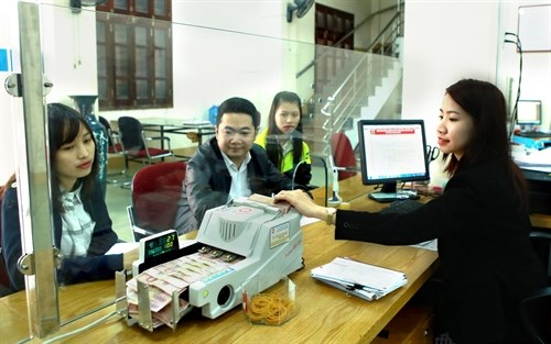 Vietnam credit growth rises hinh anh 1