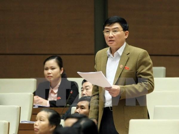 Deputies look into draft working report of legislature hinh anh 1