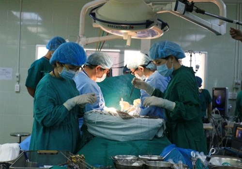 PM approves new centre for organ, tissue transplants hinh anh 1