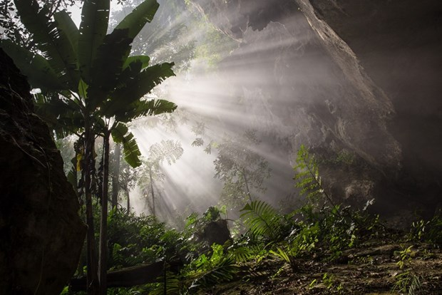 Son Doong Cave nominated for world record hinh anh 1
