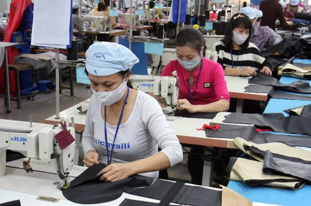 Economic restructuring might hinder growth rate in 2016 hinh anh 1
