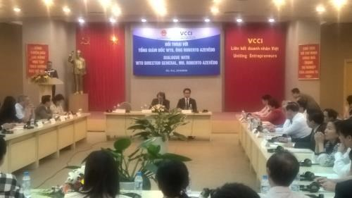 Vietnam makes good use of WTO chances: WTO head hinh anh 1