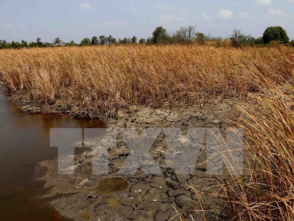 Vietnam works to ensure water security hinh anh 1
