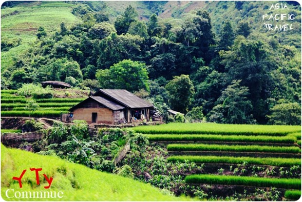 Y Ty called a well-kept secret travel destination hinh anh 1