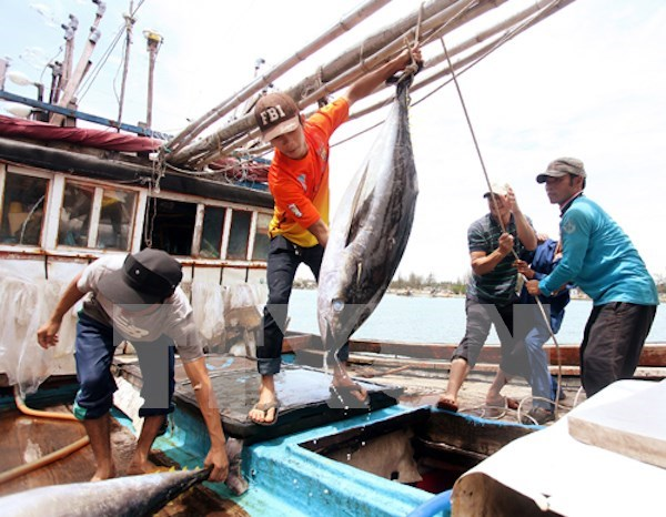 Vietnam, Thailand implement agreement on labour import-export hinh anh 1