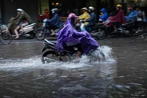Hanoi struggles with heavy flooding hinh anh 1
