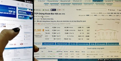 Stock markets rebound with high investor confidence hinh anh 1