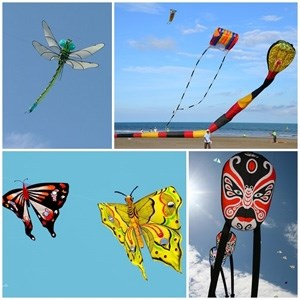 International kite festival to be held at Ecopark hinh anh 1