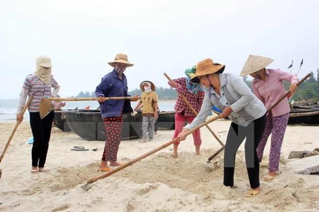 Deputy PM inspects damages from mass fish deaths in Quang Tri hinh anh 1