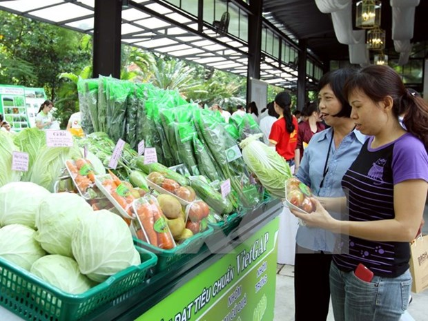Ministry releases list of safe-food outlets hinh anh 1