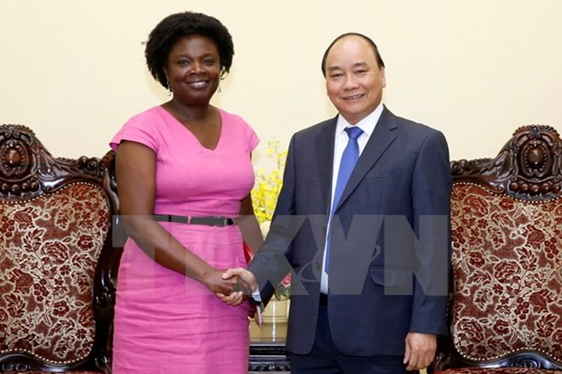 PM hosts WB Vice President for East Asia and Pacific hinh anh 1