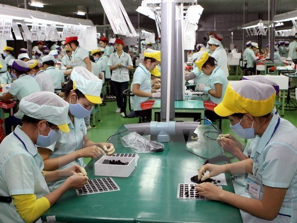 ASEAN seeks sustainable employment for labourers hinh anh 1