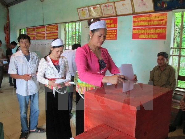 Over 70 percent of voters go to the polls by 11am hinh anh 1