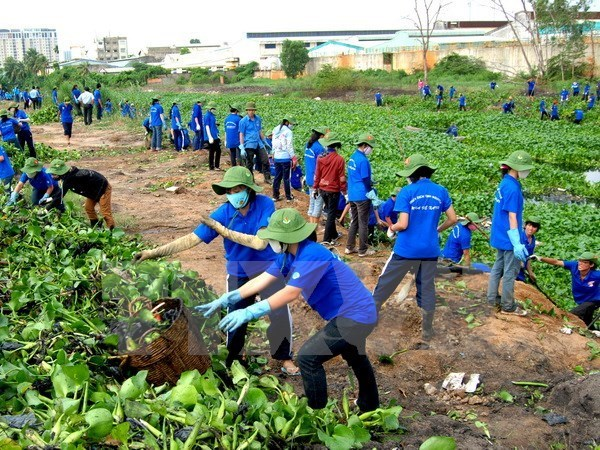 Nationwide activities to respond to World Environment Day hinh anh 1