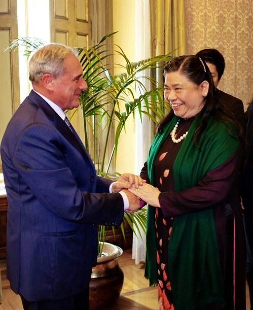 Italian Senate supports FTA with Vietnam hinh anh 1
