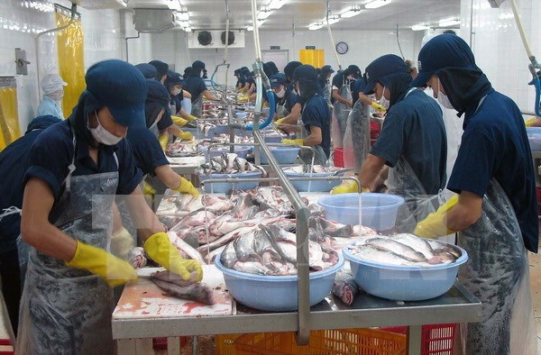 Vietnam appreciates US Senate's vote to end catfish inspection hinh anh 1