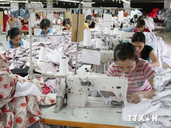 Vietnam – Canada trade revenue grows in Q1 hinh anh 1