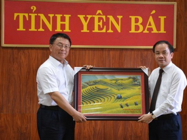 Chinese ethnic affairs official visits Yen Bai hinh anh 1