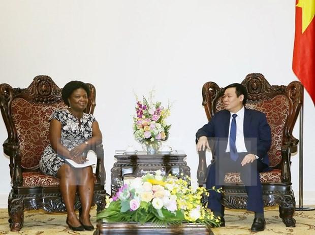 Vietnam needs WB's advice on State budget balance: Deputy PM hinh anh 1