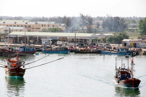 Numerous activities launched to support fishermen in Thua Thien-Hue hinh anh 1
