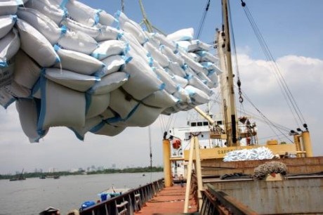Rice exporters anticipate 400,000 tonnes in May hinh anh 1