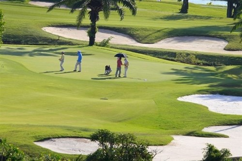 National amateur male golf tourney to kick off hinh anh 1