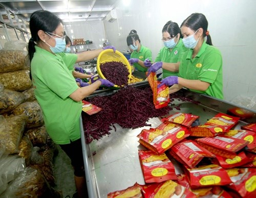 New law drafted to fuel boom in SMEs hinh anh 1